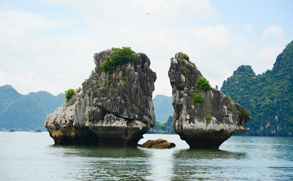 Hai Phong - Ha Long Bay One day tour